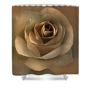 The Bronze Rose Flower Shower Curtain