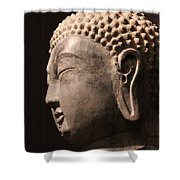 The Buddha 2 Shower Curtain