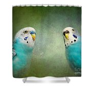The Budgie Collection - Budgie Pair Shower Curtain