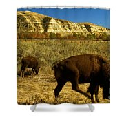 The Buffalo Dance Shower Curtain