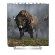The Buffalo Vanguard Shower Curtain
