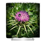 The Bug And The Thistle Shower Curtain