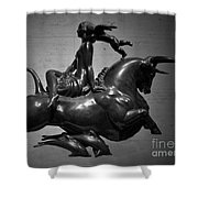 The Bull Ride Shower Curtain