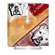 The Bulldogs Shower Curtain