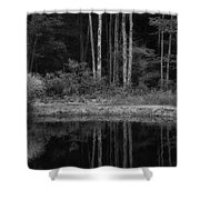 The Bush By The Lake Bw Shower Curtain