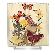 The Butterfly Book Shower Curtain