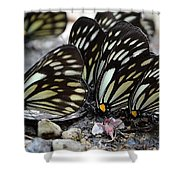The Butterfly Gathering Shower Curtain