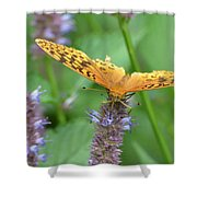 The Butterfly Wins Shower Curtain