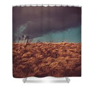 The Calm In The Storm Shower Curtain
