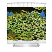 The Canal Shower Curtain