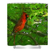 The Cardinal 2 Painterly Shower Curtain