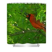 The Cardinal Painterly Shower Curtain