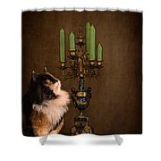 The Cat And The Candelabra Shower Curtain