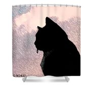 the Cat Shower Curtain