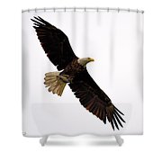The Catch Shower Curtain