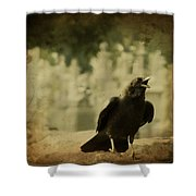 The Caw Shower Curtain