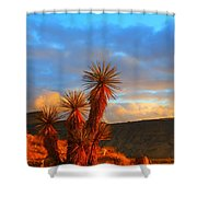 The Cerbat Foothills Shower Curtain