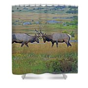 The Challenge Shower Curtain