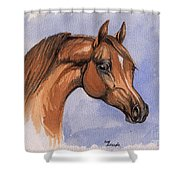 The Chestnut Arabian Horse 1 Shower Curtain