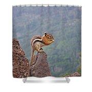 The Chipmunk Shower Curtain