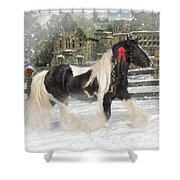 The Christmas Pony Shower Curtain by Fran J Scott
