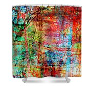 The City 10 Shower Curtain