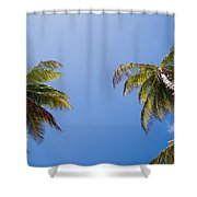 The Coconut Ladder Shower Curtain
