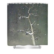 The Cold Bones Of Trees At Night Shower Curtain