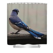 The Cold Shoulder Shower Curtain
