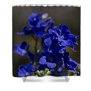 The Color Blue V6 Shower Curtain