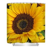 The Color Of Summer - Sunflower Shower Curtain