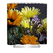 The Colors Of Spring Shower Curtain