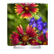 The Colors Of Summer  Shower Curtain
