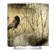The Common Crow Shower Curtain