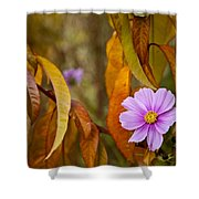 The Cosmos In The Peach Tree Shower Curtain