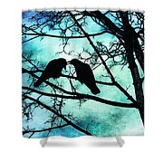 The Courtship Of Crows Shower Curtain