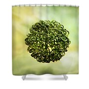 The Creation Shower Curtain