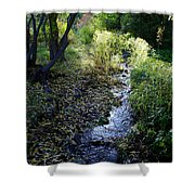 The Creek At Finch Arboretum Shower Curtain