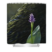 The Crest Shower Curtain
