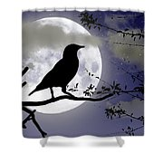 The Crow And Moon Shower Curtain