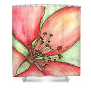 The Crowd Pleaser 1 Shower Curtain by Sherry Harradence