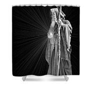 The Crystal Shower Curtain