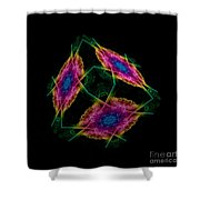 The Cube 2 Shower Curtain