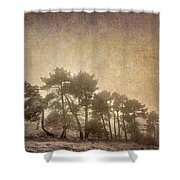The Curved Tree Shower Curtain