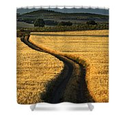 The Curved Way. Shower Curtain