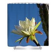 The Daily Bloom Shower Curtain