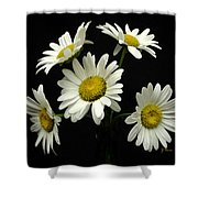 The Daisy Five  Shower Curtain