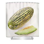 The Damsha Marrow  Shower Curtain by William Hooker