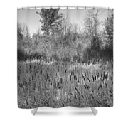 The Dance Of The Cattails Bw Shower Curtain
