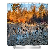 The Dance Of The Cattails Shower Curtain